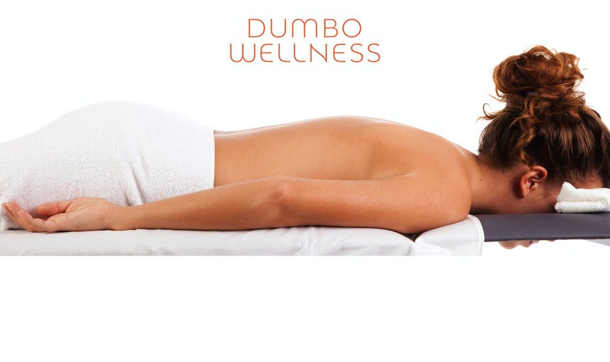 Dumbo Wellness Logo Final