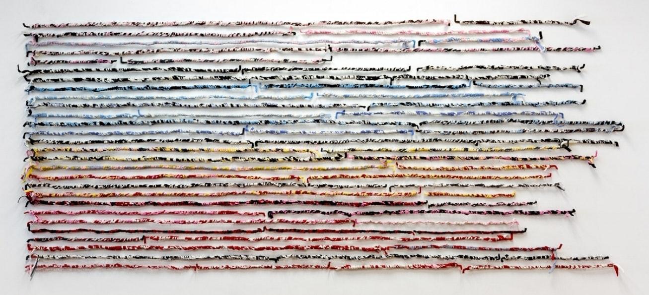 Kathleen Schneider: Bird Over America