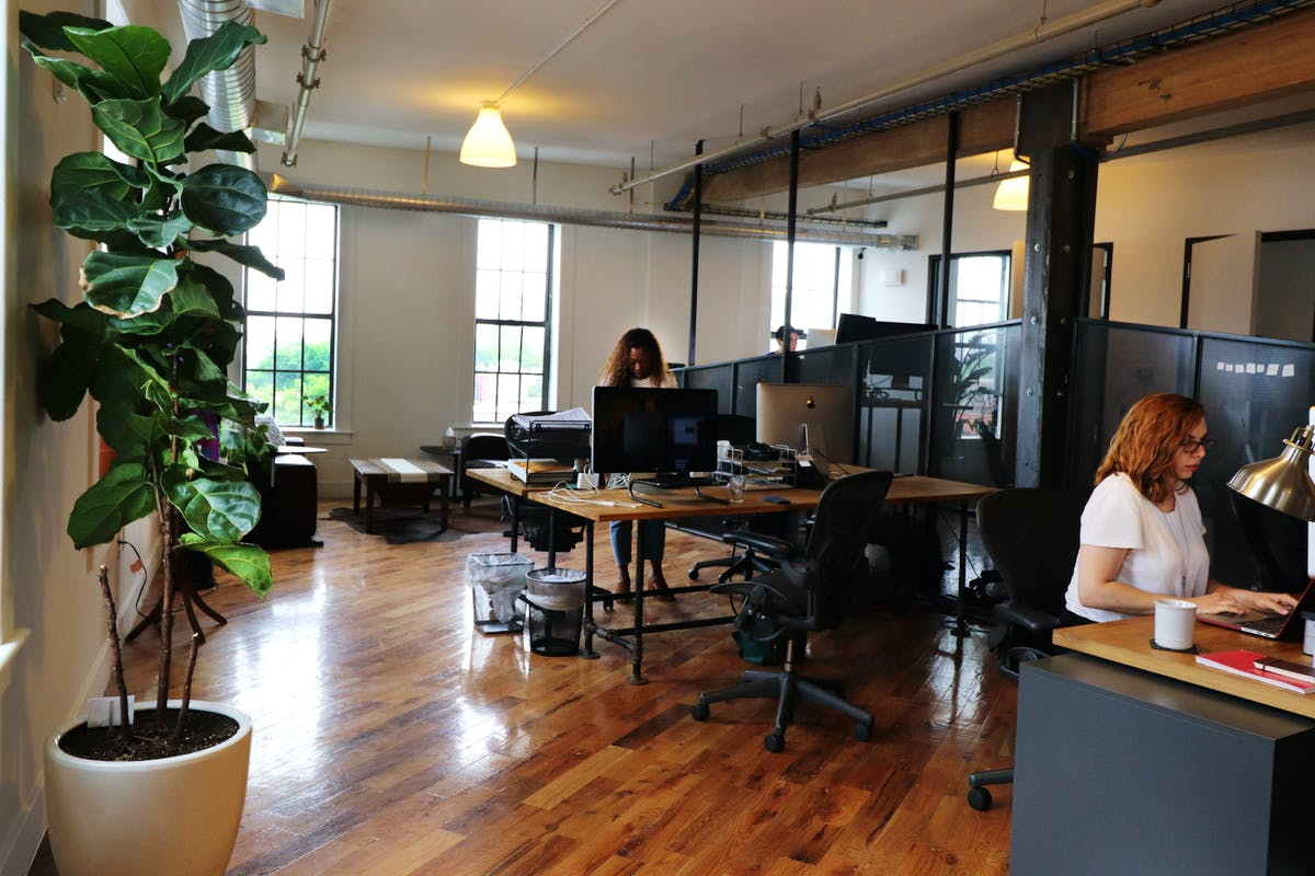 Lonelyleap's new office on Water Street in DUMBO