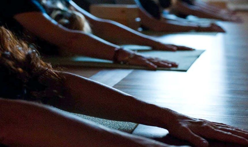 Places Dumbo Llamaste Yoga Center